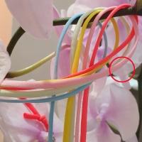 플라워제이(FLOWER.J)XX-504629351<br>Size: Free<br>Color: light pink<br>Update: 2020-07-10