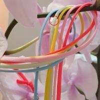 플라워제이(FLOWER.J)XX-504629352<br>Size: Free<br>Color: light mint<br>Update: 2020-07-10